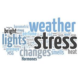 Migreni ne tetikler dr emel gokmen