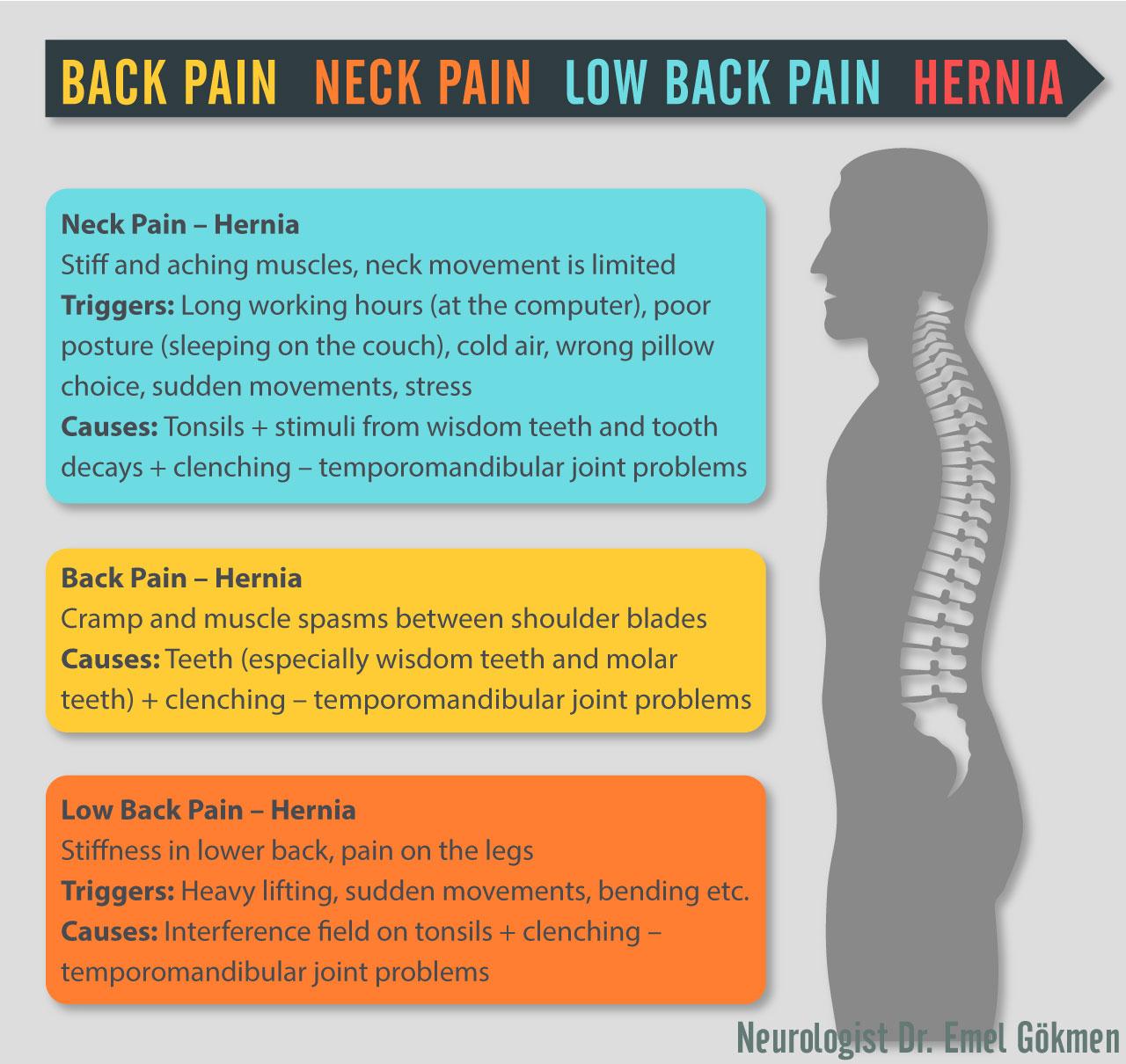 Back pain infographic Dr. Emel Gokmen