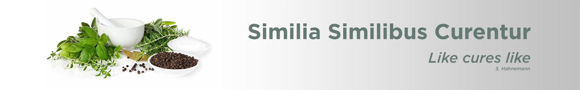 Homeopathy page image. Similia Silimibus Curentur. Like cure like. S. Hahnemann. Dr. Emel Gokmen