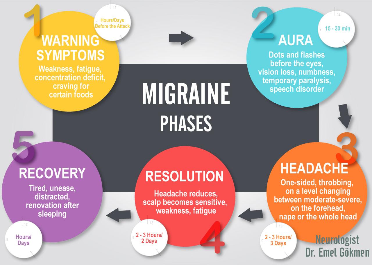 Migraine phases infographic Dr. Emel Gokmen
