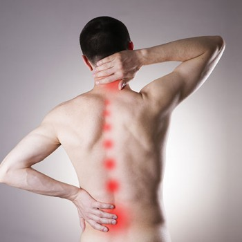 Reasons for back pain and unknown solutions. Dr. Emel Gokmen