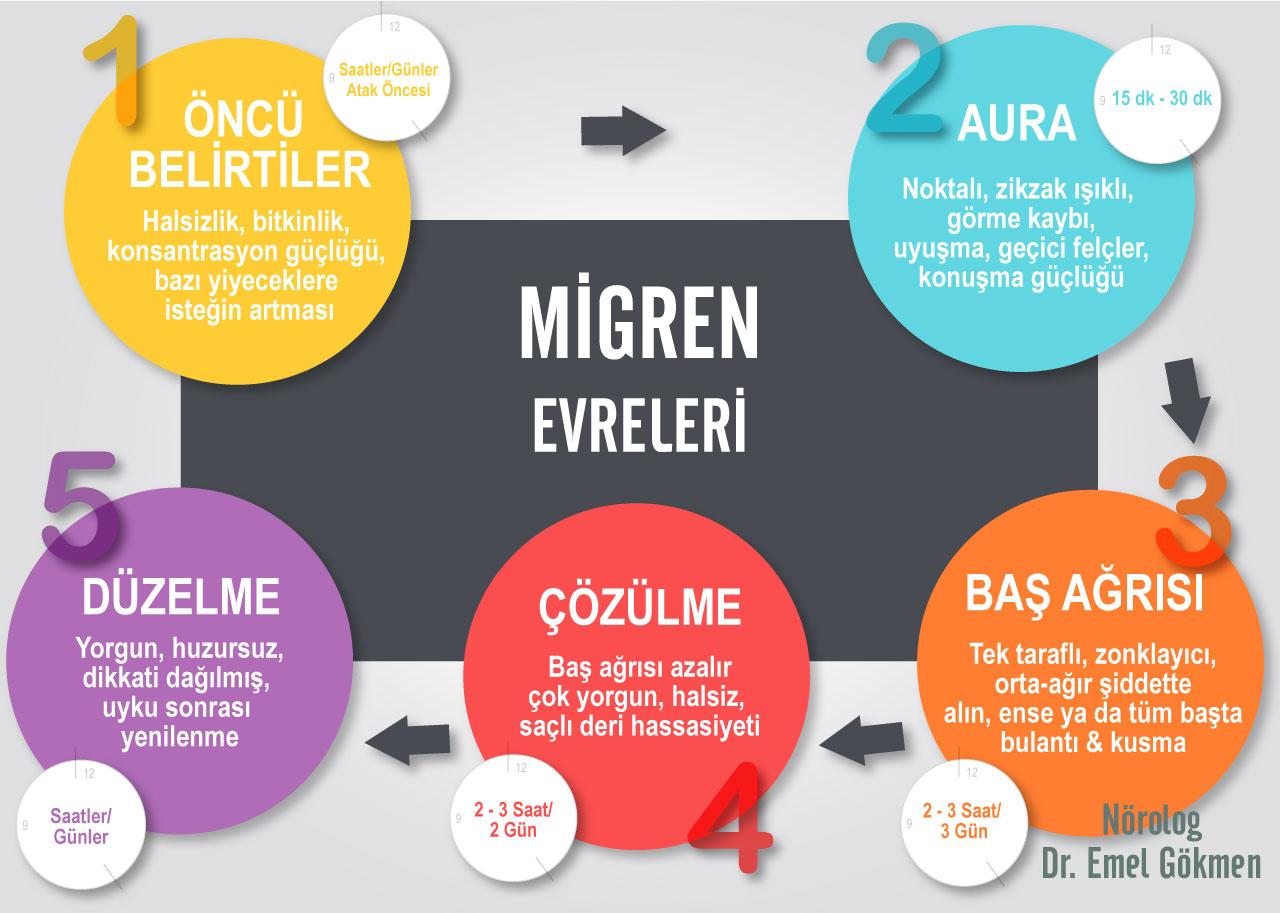 Migren evreleri infografik. Dr Emel Gökmen
