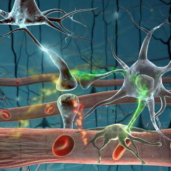nöral terapide bozucu alan
