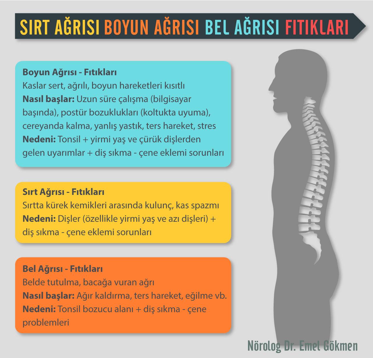 Omurga: tedavi ve nedenleri